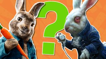 The Ultimate Rabbit Quiz