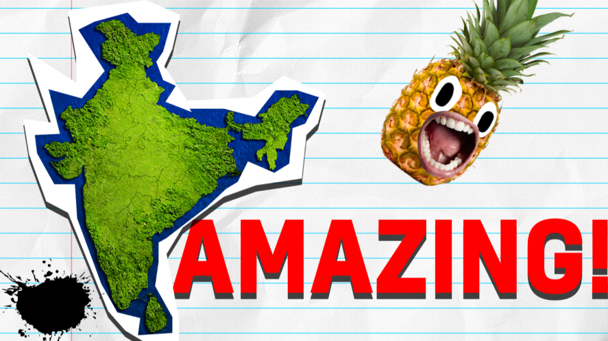 Map of India with Pinapple and amazing on lined background
