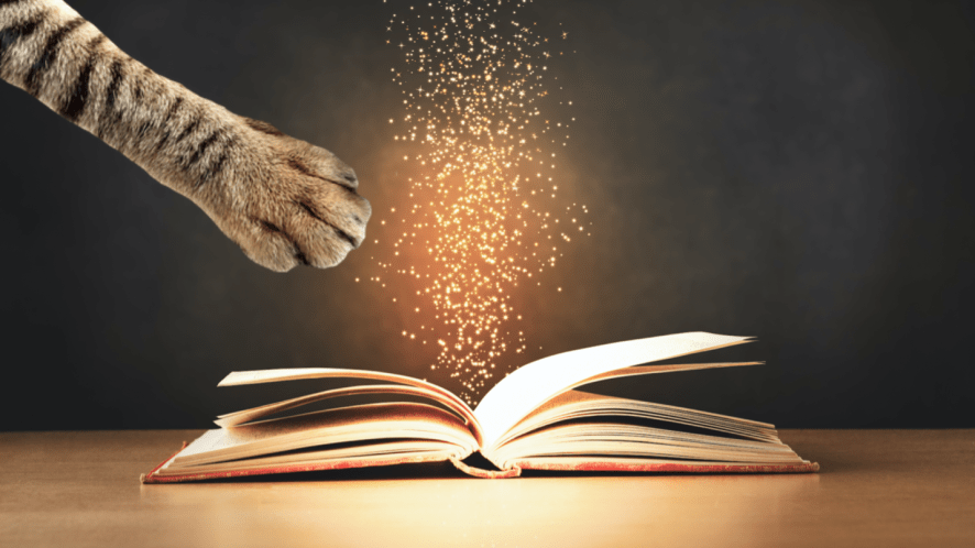 A cat's paw reaching towards a magical book