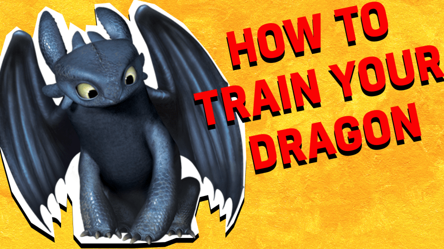 How to train your dragon result