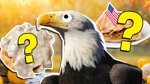 Best American Food Quiz