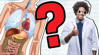Life Sciences Quiz Thumbnail