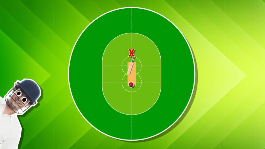 Cricket field position quiz
