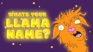 What's YOUR Llama Name?