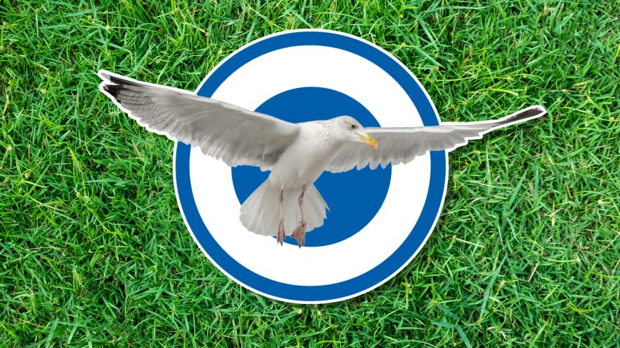 A seagull on a blue and white circle