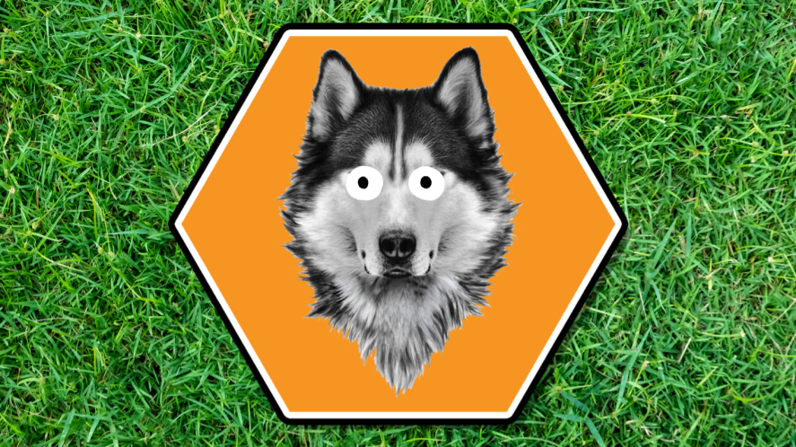 A wolf in a orange hexagon