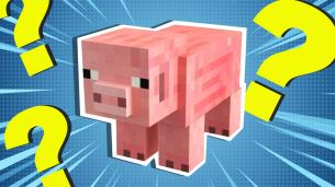 Minecraft pig