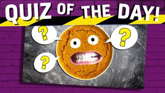 The Ultimate Biscuit Name Quiz