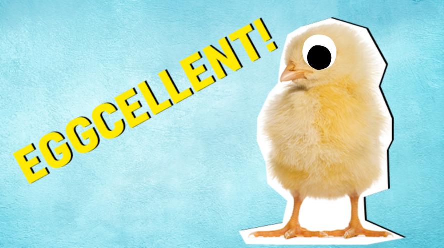 Eggcellent result