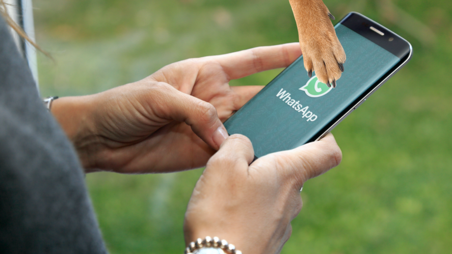 A person using WhatApp on their smartphone