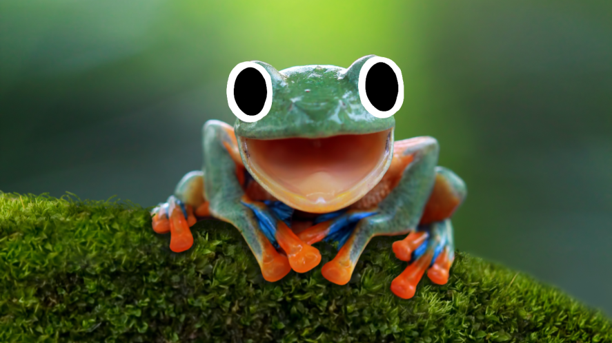A laughing frog