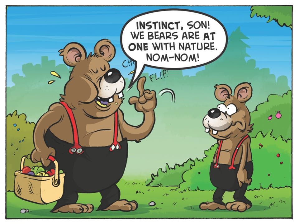 Three Bears comic strip from the Beano. 'Instinct, son! We bears are at one with nature. Nom-nom.'