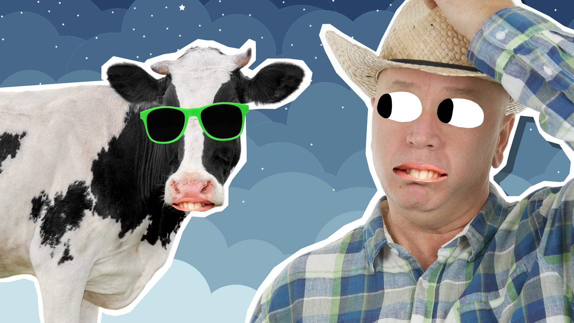 A farmer and a sleepy cow