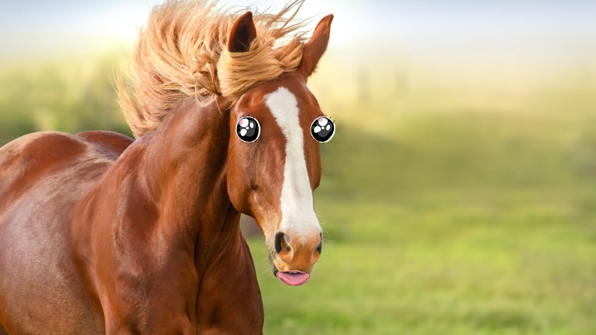 A horse with long flowing hair
