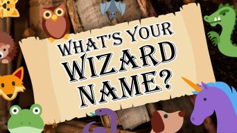 The Splendidly Magical Random Wizard Name Generator