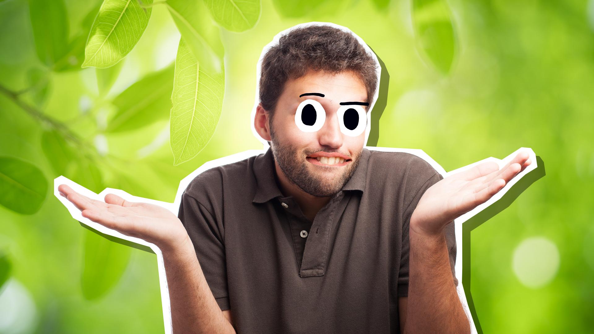 A man in a leafy garden
