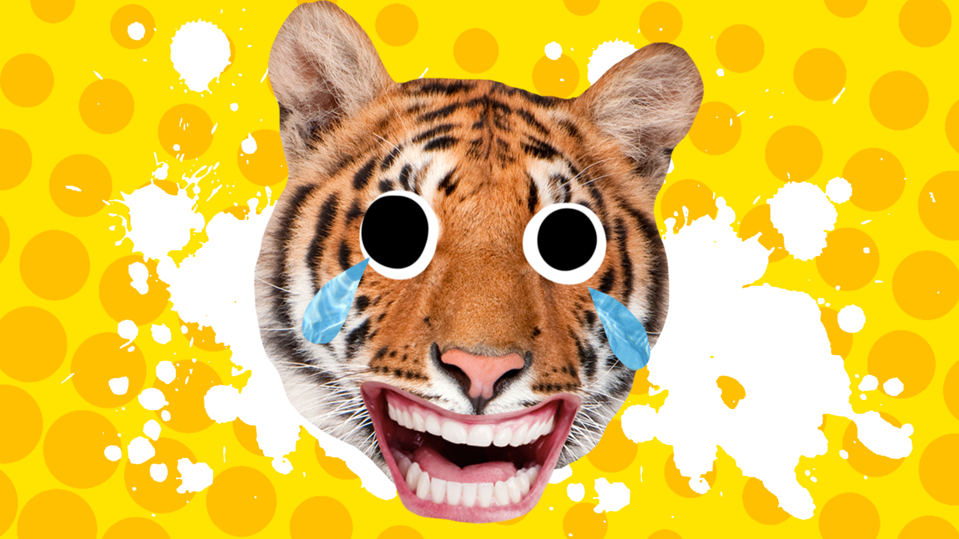 A laughing Bengal tiger in front of a yellow spotted background