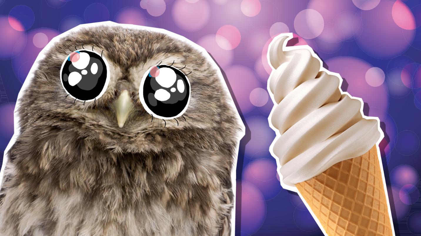 An owl with an ice cream cone