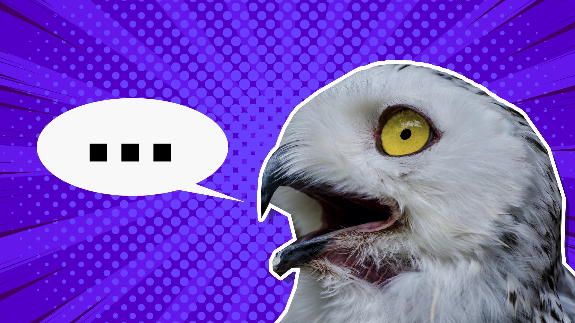 An owl giving a silent hoot