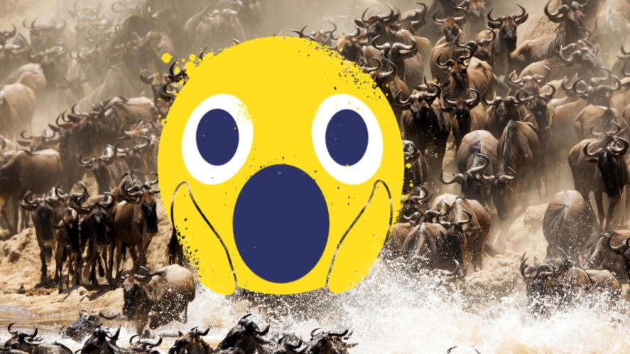 Wildebeest and shocked emoji