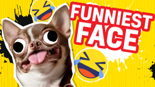 Britain's Funniest Family - The Funniest Family Face!