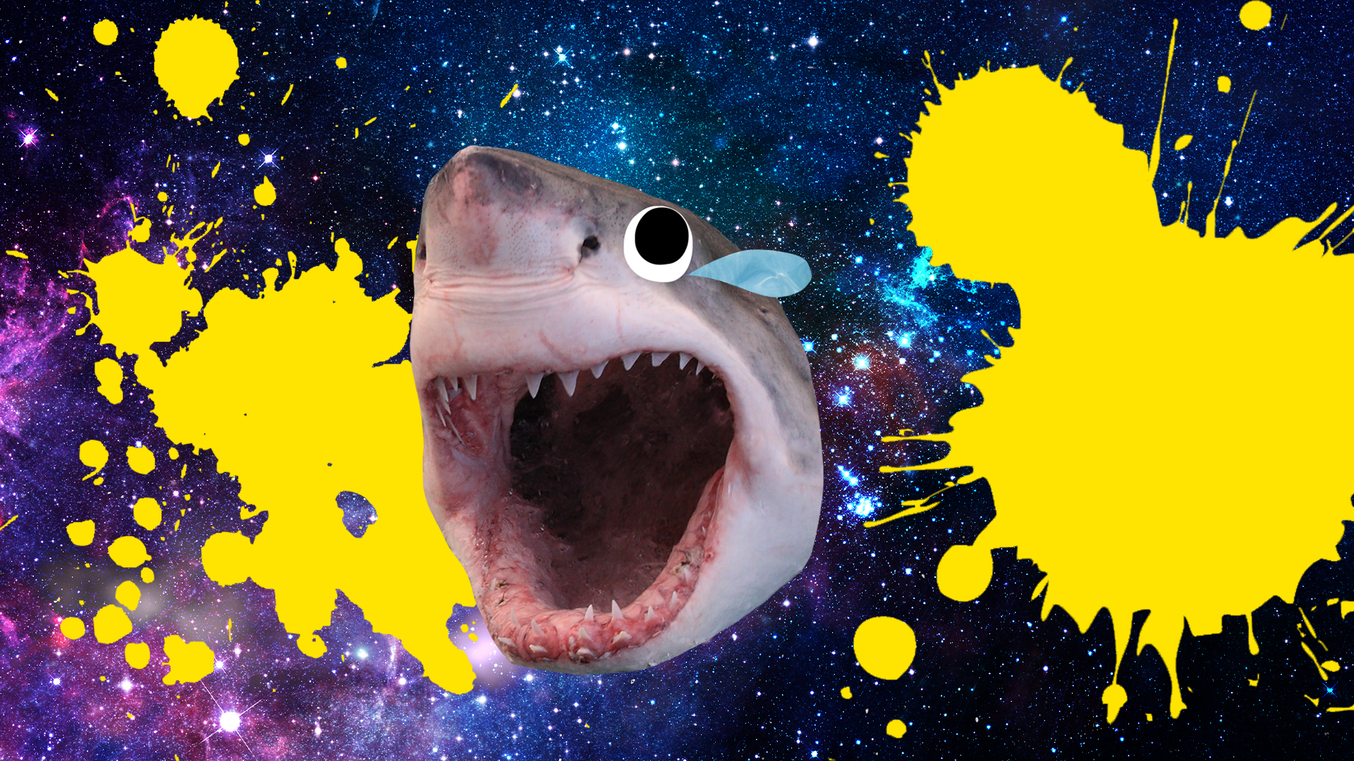 A shark with its mouth wide open in a threatening way