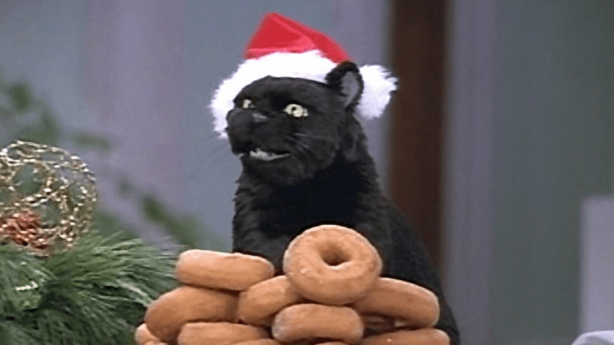 Salem the cat in a christmas hat