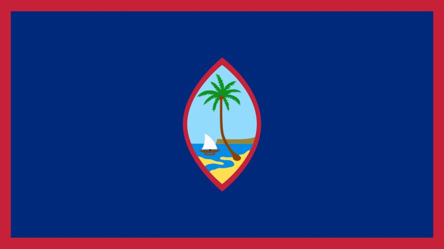 A flag with a palm tree and beach on it