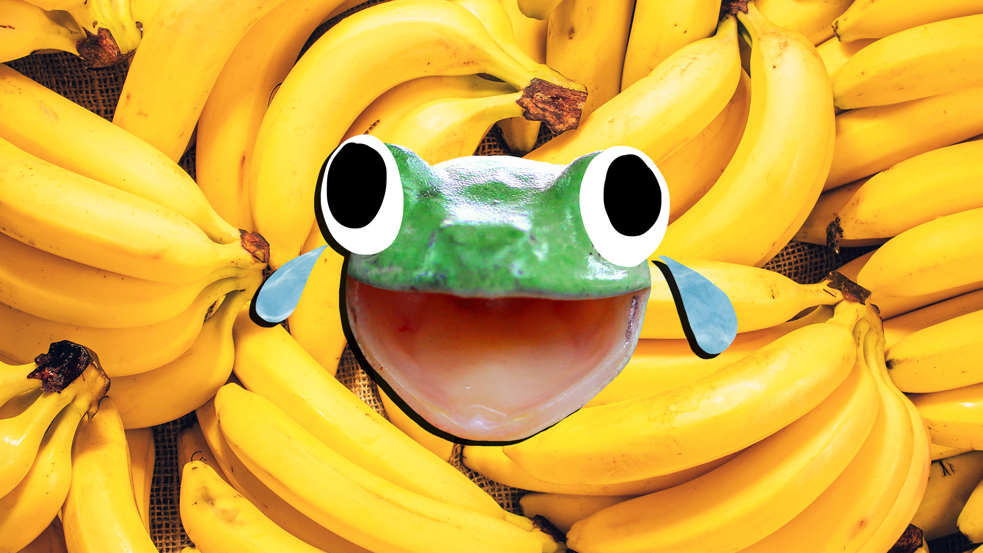 A laughing green frog in front of lots of bananas