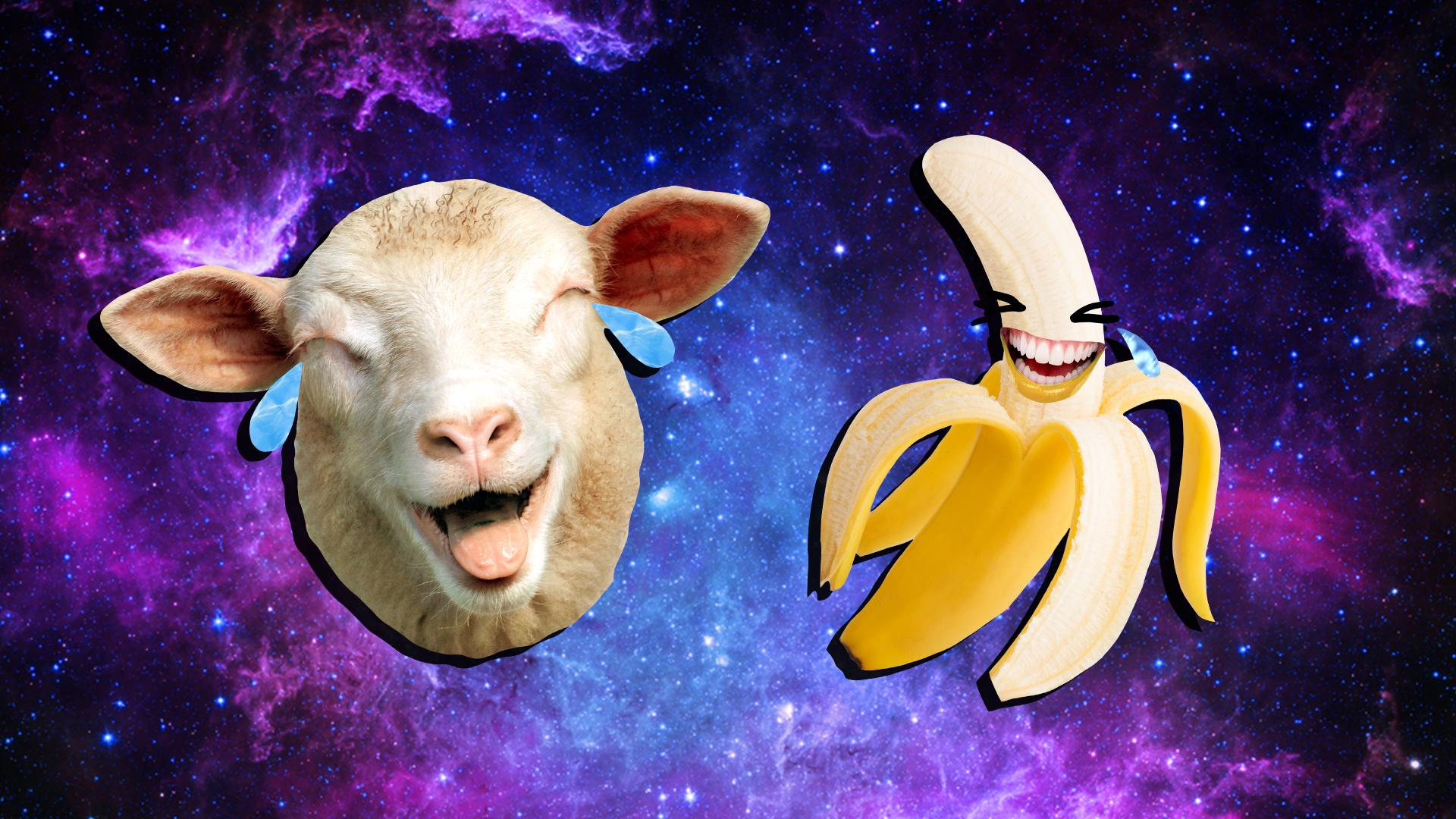 A cry laughing banana and sheep