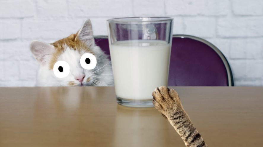 A cat reaching for a glass of milk