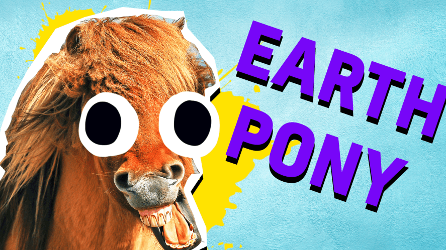 Earth Pony Result