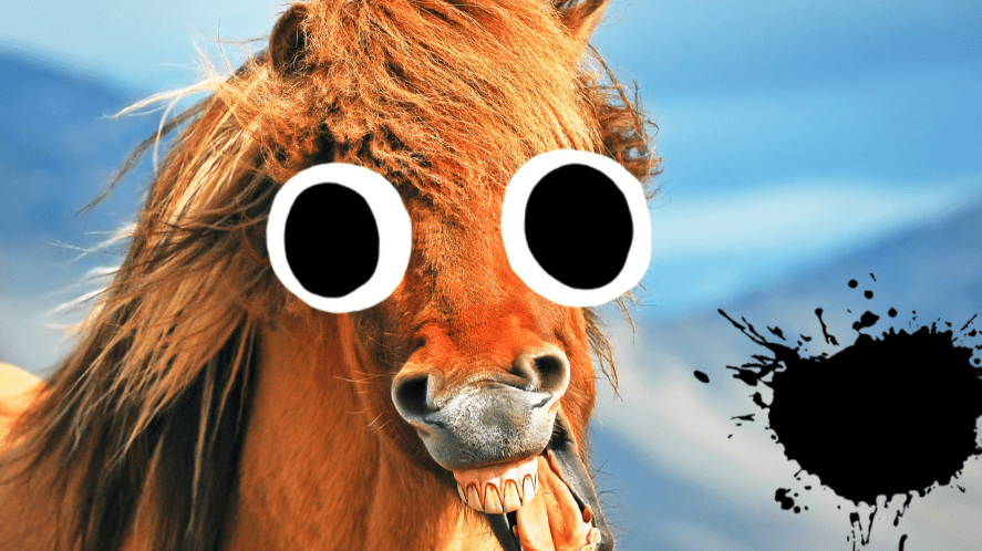 Horse making a face