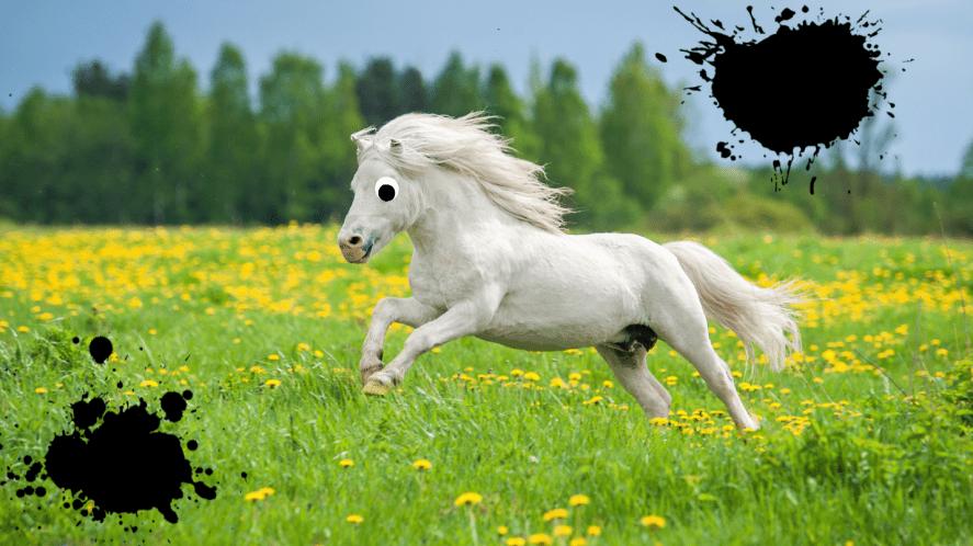 Horse galloping through a field