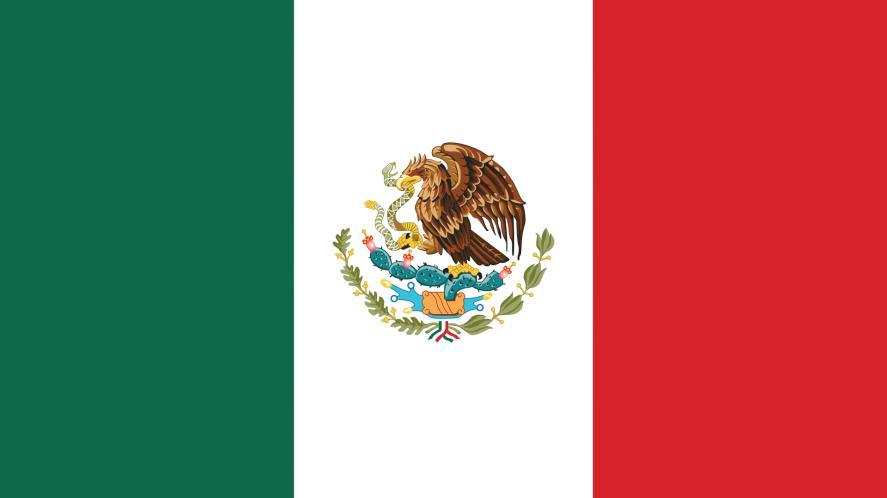 The Mexico flag
