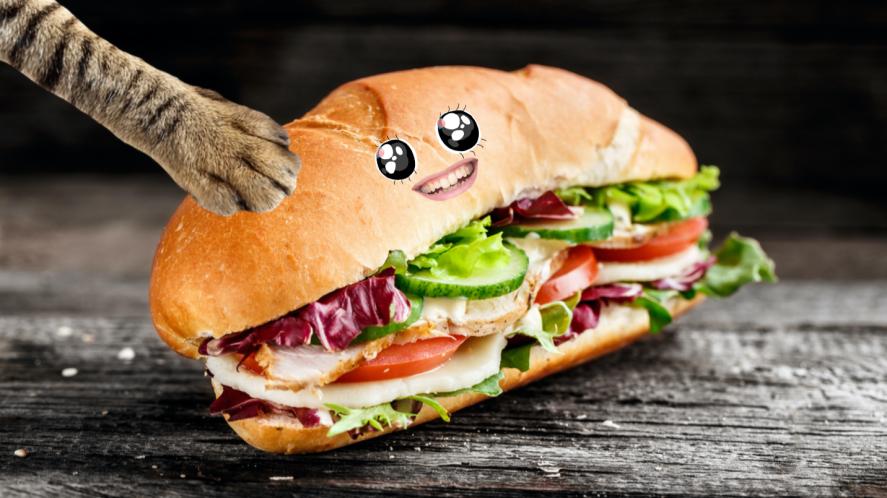 A big sandwich