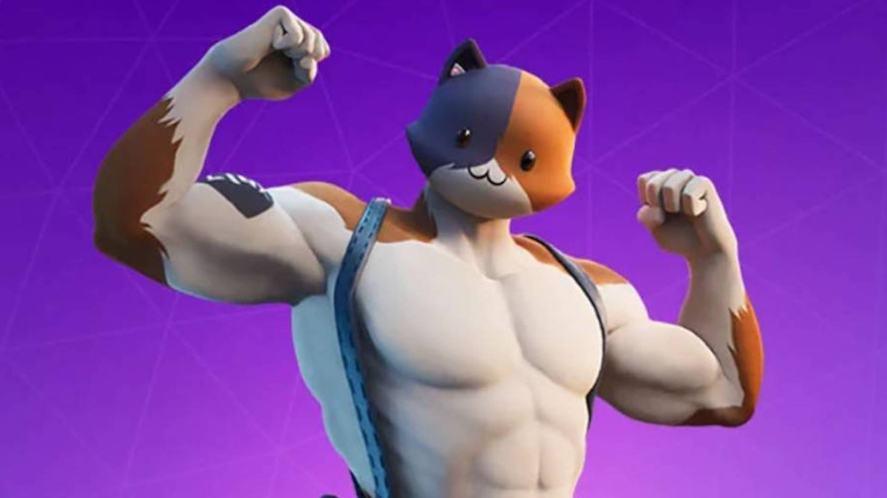A muscular cat in Fortnite