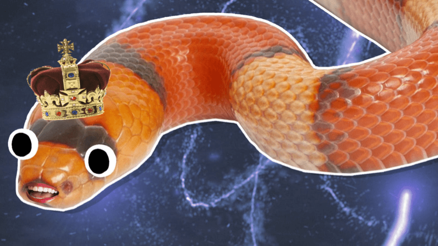 A snake called Nagini