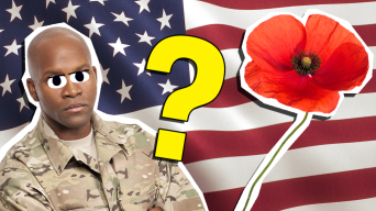Ultimate Veterans Day Trivia Questions