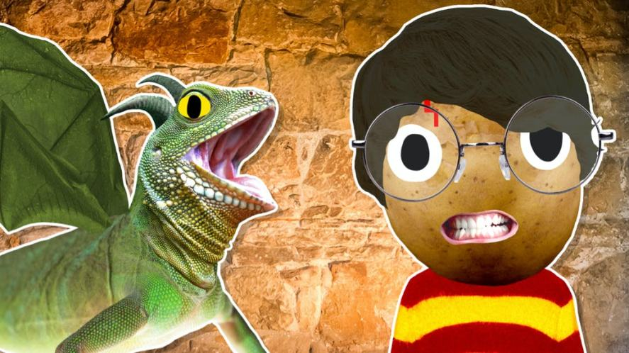 Harry Potter and a scary lizard dragon thing