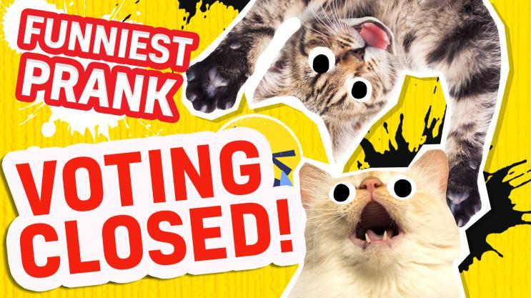 Britain's Funniest Prank - Voting Closed!