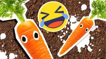 Carrot Jokes