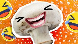Mushroom Jokes