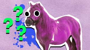 My little pony name quiz thumbnail
