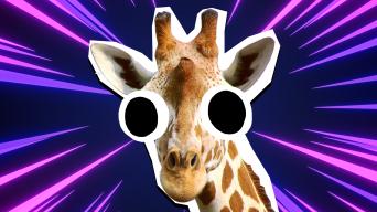 Giraffe Jokes thumbnail