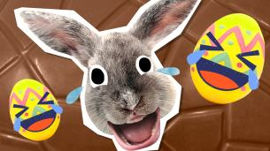 Funny Easter Jokes