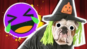 Halloween Costume Jokes