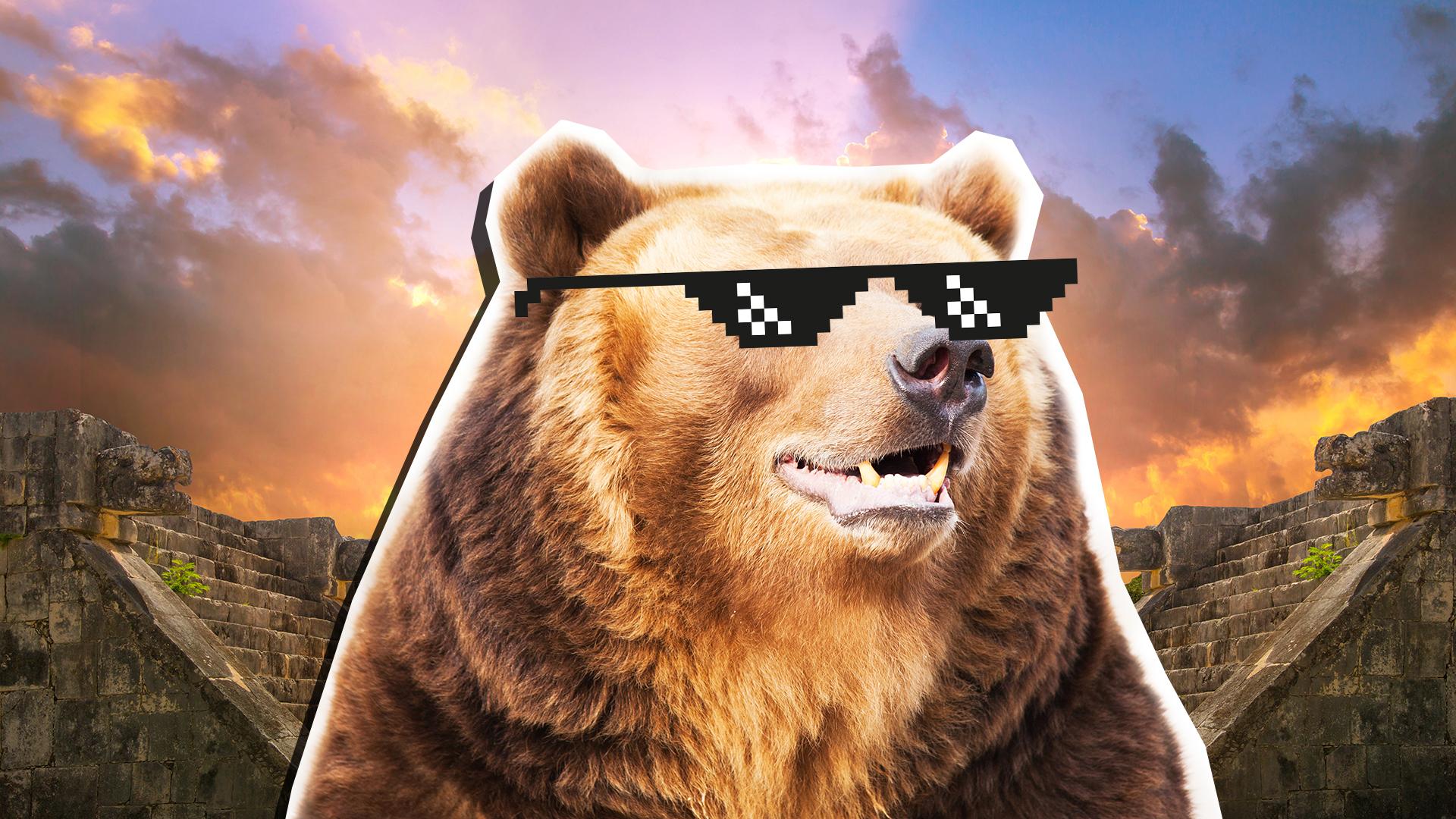 A brown bear wearing sunglasses
