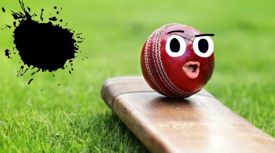 A cricket ball resting on a cricket bat
