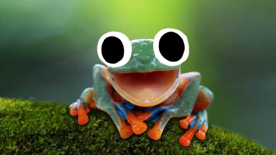 Frog with mouth open on leaf